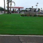 Al Moore Mortuary - Landscape by Victor's Landscaping